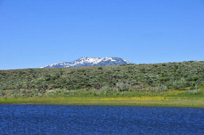 Rare Nevada 1 Acre Lot At  Wildhorse Reservoir! National Forest~Lake~No Reserve! 12