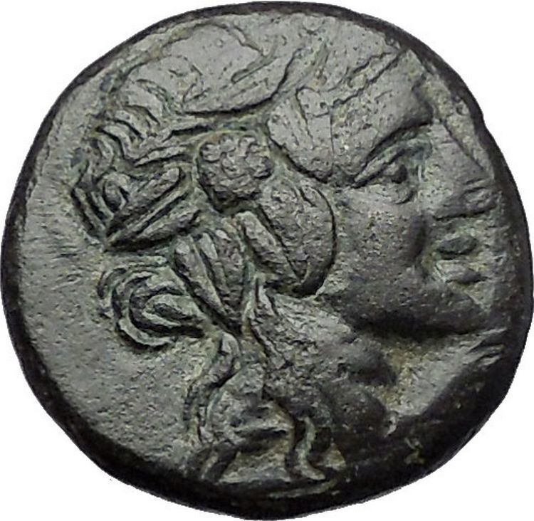 Amisos in Pontus MITHRADATES the GREAT Time Dionysus Cista Greek Coin i55451 2