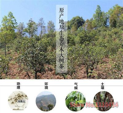 100g Mûr Pu-erh Thé Tuocha Premium Yunnan Thé Pu-erh Vieux Thé Arbre Matériaux 茶 11