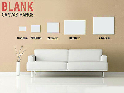 5 x Artist Blank Canvas Assorted Size Large Range Wholesale Bulk Art Supplies 2