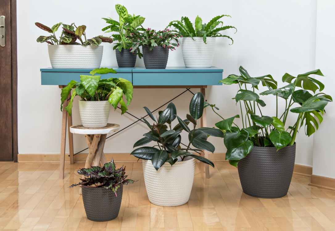 Plant pot cover indoor plastic rattan flower cover round modern decor planter 12