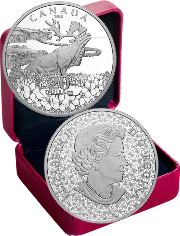 2019 Forget-Me-Not Flowers $20 1OZ Silver Proof Coin Canada Newfoundland Caribou 3