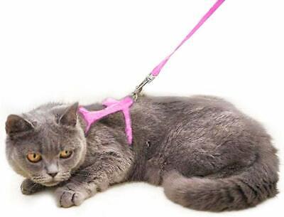 Adjustable Harness/leads/Collar For Animal Walking Cats/Kitten/Ferrets/pets UK 3