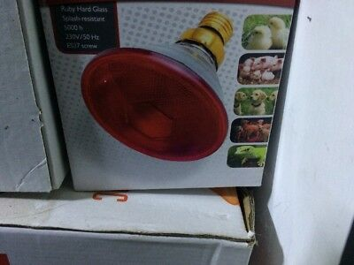 Par38 175w Infrared Bulb For Poultry Heat Lamp Brooder
