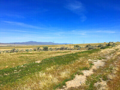 Rare 2 Acre New Mexico Home Site! On Power, Road! Near Homes! Mountain Views! 6