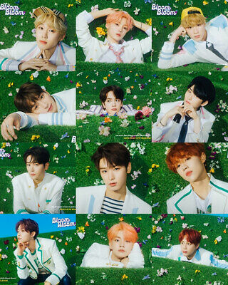 THE BOYZ BLOOM BLOOM 2nd Single Album RANDOM CD+Book+Pop-up+Sticker+Letter+Card 4