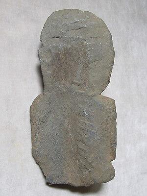ANCIENT GANDHARAN SCHIST STONE SCULPTURE BUST OF BODHISATTVA, circa 200 AD 8
