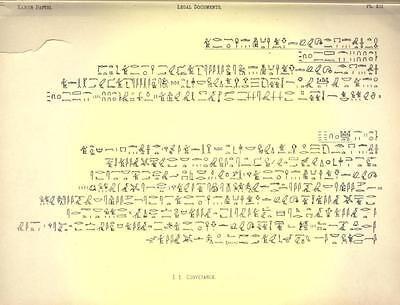 Ancient Egyptian Hieroglyphics - Papyrus Language Egypt - 145 Rare Books On Dvd! 7
