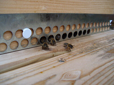 6  Mouse Guards for Beehives
