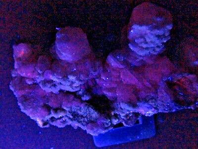 """Minerales """" Fantasticos Cristales De Calcita De Mina Moscona  -  12B17 """" 2"""