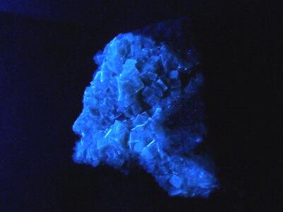 """Minerales """" Preciosos Cristales Fluorescentes De Fluorita Mina Moscona -10A17 """" 6"""