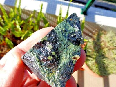 "Fosiles Trilobites"" Fabulosos Y Rarisimos Estromatolitos De Madagascar - 10A18 "" 7"