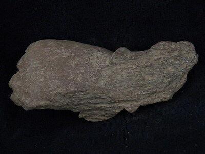 Ancient Stone Bodhasattva Hand Gandhara/Gandharan 100 AD    #STN639 10