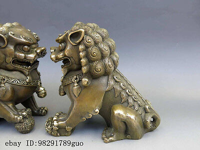 Chinese Brass Copper Animal Feng shui Foo Dog Lion town house Statue pair 3
