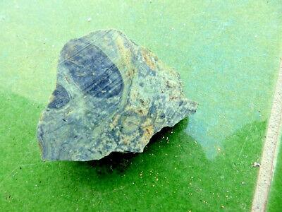 "Fosiles Trilobites"" Fabulosos Estromatolitos Del Precambrico De Madagascar- 8B17 2"