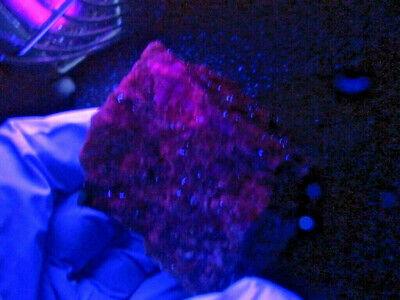 """Minerales """" Extraordinario Mineral De Labradorita De Madagascar  -  1A19 """" 6"""