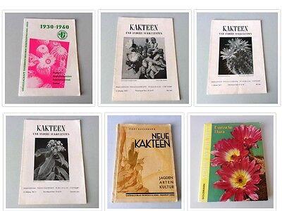 Zimmerpflanzen Kakteen Exotische Pflanzen Eur 5 00 Picclick De