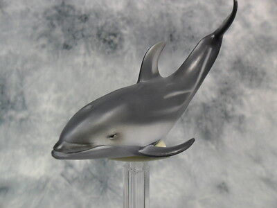 Collecta Pacific White-Sided Dolphin 88612 A Marine Animal Figure