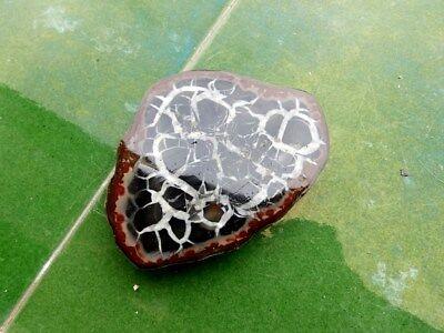 """Minerales """" Extraordinario Mineral De Septaria Cristalizada De Marruecos- 5A18 """" 2"""