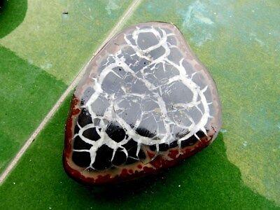 """Minerales """" Extraordinario Mineral De Septaria Cristalizada De Marruecos- 5A18 """" 4"""