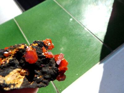 """Minerales """" Fantasticos Cristales Biterminados De Vanadinita Marruecos- 10K18"""" 4"""