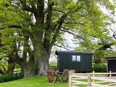 Beautiful holiday Cottage nr Hay On Wye Sleeps 4+2 24-27 July £350 dog friendly 2