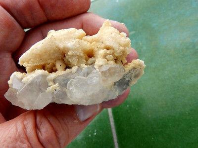 """Minerales """" Fantastico Mineral De Calcita Dte De Perro  (Marruecos) - 10B18 """" 4"""