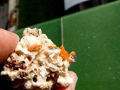 """Minerales """" Fabulosos Cristales De Wulfenita De Aderhoual Mibladen  -  1B16 """" 3"""
