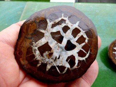 "Minerales "" Extraordinarios Cristales De Septaria De Marruecos  -  10F18 "". 4"