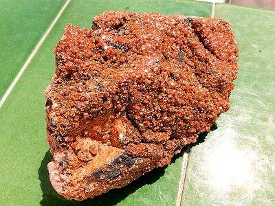 "Minerales "" Extraordinarios Cristales Rojizos De Vanadinita Marruecos - 8B16 "" 6"