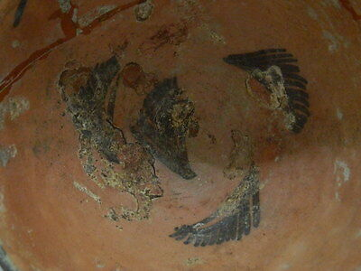 Ancient Large Size Teracotta Painted Pot Indus Valley 2500 BC #PT1524 4