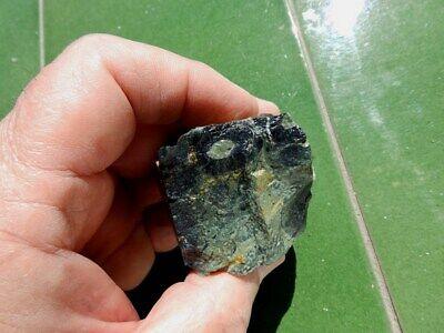 "Fosiles Trilobites "" Fabulosos Y Rarisimos Estromatolitos De Madagascar - 3F19 4"