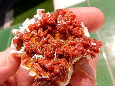 """Minerales """" Extraordinarios Cristales Rojizos De Vanadinita Marruecos - 8C16 """" 3"""
