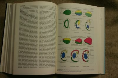 Lexikon Neurobiologie, Nervensystem, Neurologie, Neurowissenschaften, DDR 1988 4