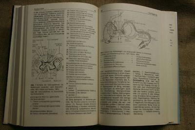 Lexikon Neurobiologie, Nervensystem, Neurologie, Neurowissenschaften, DDR 1988 5