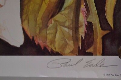 Vintage Angela's Roses Signed Paul Eade 223/1050 Limited Edition Print 3