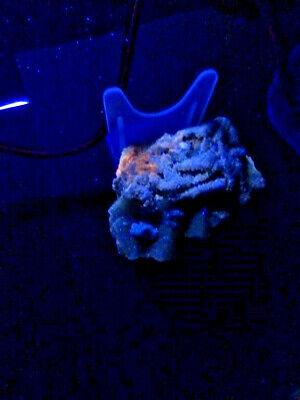 "Minerales "" Fantasticos Cristales Fluorescentes De Fluorita(Asturias) - 10E17 "" 4"