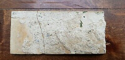 6 Antique Dutch Delft Edge Fireplace Floral Tiles and 1 with dog 8