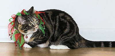 Rosewood Scrunchy Christmas Cat Collar With Bells For Cats