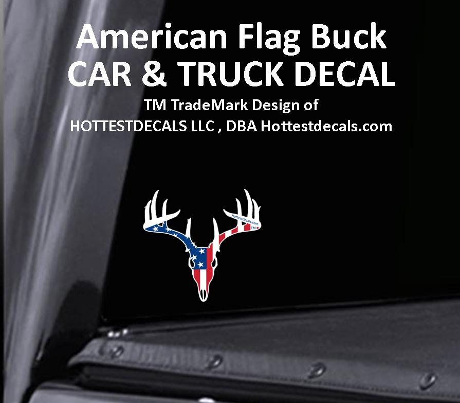 Native Texan Texas Lone Star State Car Truck Bumper Vinyl Decal Sticker 07051