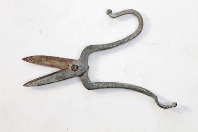 Antique Bulgarian Galvanized Scissors 19 Century RARE 2