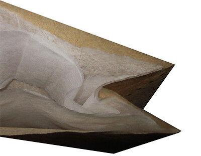 10 sacs pour aspirateur Pour Lavor LAVORWASH Genio inox gn-18 gn-32 GNX 633