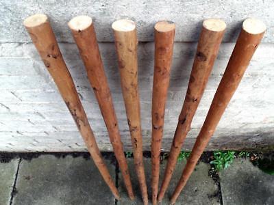 3 Chestnut Shafts Shanks Seasoned Straightened Stickmaking Walking Stick Making 3