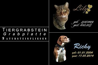Ihr Tierfoto TEXT Farbig Tiergrabstein Naturstein Gedenkplatte Gedenkstein Motiv 3