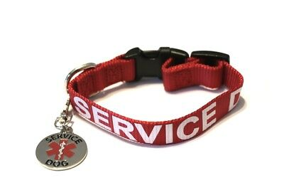 ALL ACCESS CANINE™ Service Dog - Emotional Support Animal ESA Dog Collar and Tag 2