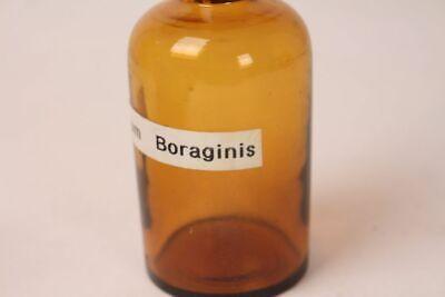 Apotheker Flasche Medizin Glas braun Oleum Boraginis antik Deckelflasche 12 cm 4