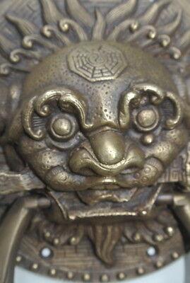 "large Solid foo dragon heavy pure Brass Door Knocker 7"" Chinese dog Head ring B 7"
