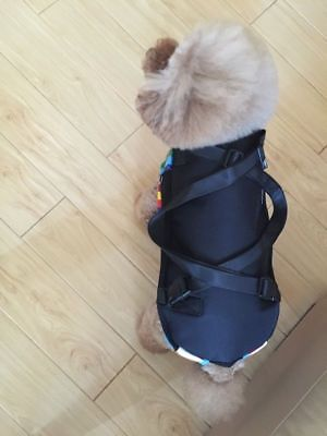 Pet Cat Dog Carrier Front Pack Puppy Travel Bag Hiking Backpack Head Legs Out 10