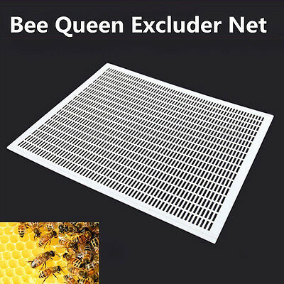 "10-Frame Bee Queen Excluder Trapping Net Grid Beekeeping Plastic Equipment 16/"" #"