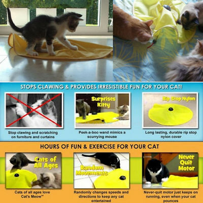 Kitten Pet Cat Ball Chew Catnip Toys Play Interactive Funny Game Mouse Toy Lot 4